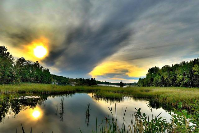 Landscape, Nature, Environment, Climate, Lake, Marsh