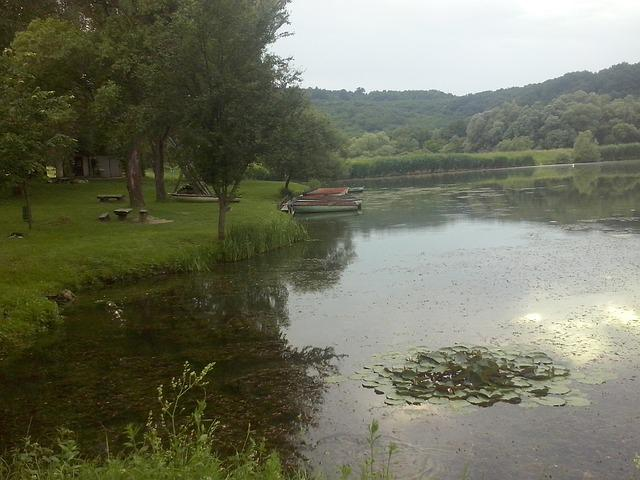 Lake, Fishing Lake, Nature, Reflection, Park, Forest
