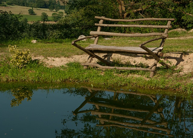Lake, Bench, Reflections, Nature
