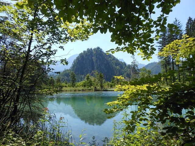 Nature, Landscape, Almsee
