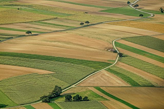 Agriculture, Field, Arable Land, Nature, Landscape