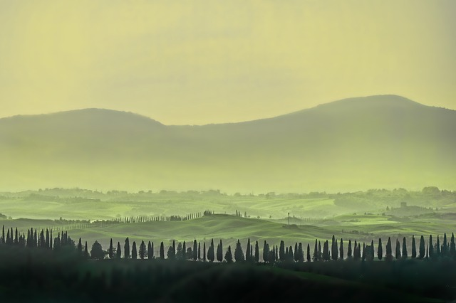 Tuscany, Landscape, Forest, Panorama, Nature, Sunset