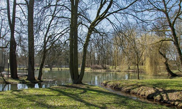 Nature, Tree, Landscape, Season, Waters, Grass, Park