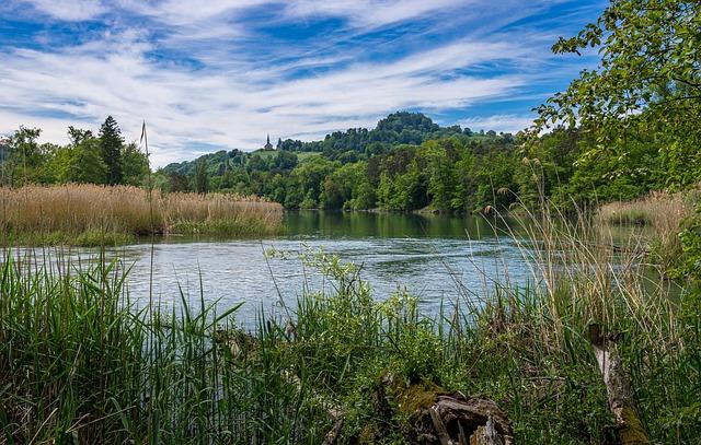 Rhine, Water, River, Nature, Landscape, Mood, Clouds