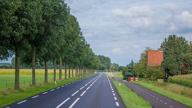 Holland, Road, Rural, Landscape, Nature, Summer