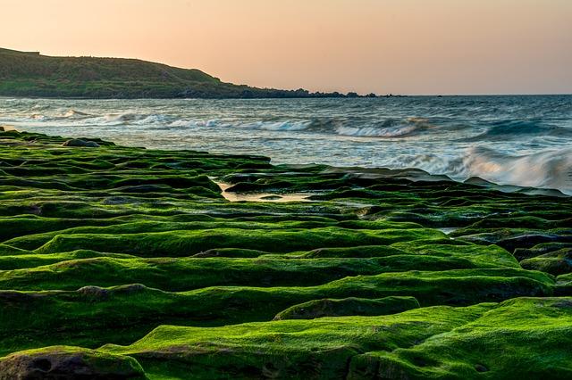 Water, Sea, Seashore, Ocean, Beach, Nature, Landscape