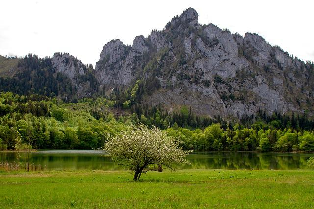 Lake, Mountain, Nature, Laudachsee On 849m