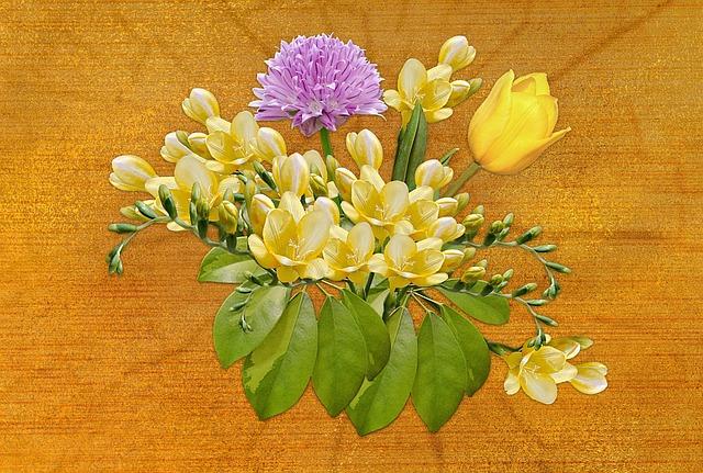 Flower, Freesia, Tulips, Plant, Nature, Floral, Leaf