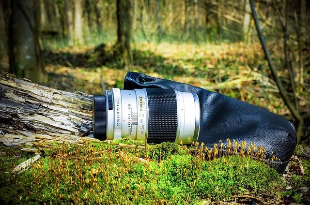 Lens, Camera Lens, Old, Nature, Forest
