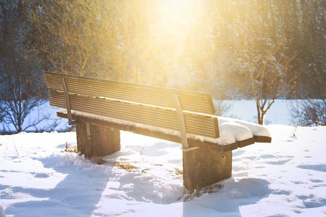 Bench, Lonely, Bank, Nature, Rest, Loneliness, Forest