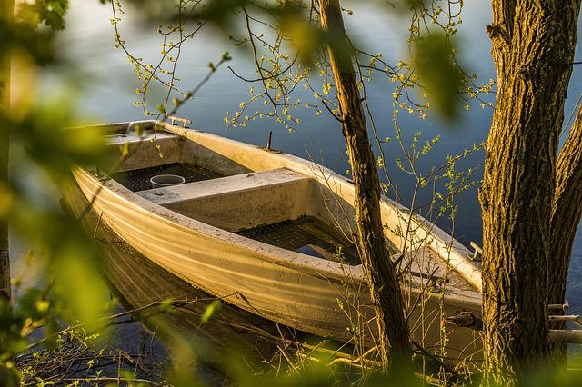 Boot, Spring, Water, Lake, Quiet, Mood, Tree, Nature