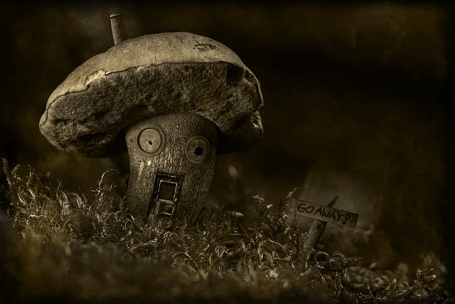 Nature, Mushroom, Moss, Haunted, Dreary, Broken, Dark
