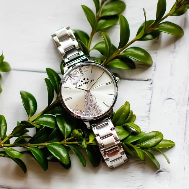 Clock, Leaf, No One, Nature, Plant, Ladies Watch