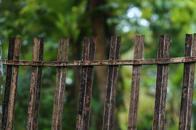 Fence, Outdoors, Wood, Nature, Barbed Wire