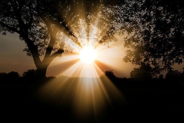 Sunlight, Nature, Outdoors, Sunbeam, Landscape, Trees