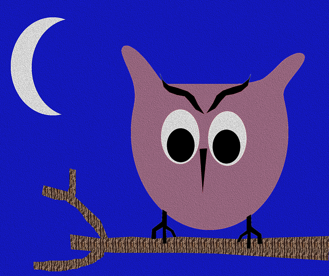 Owl, Night, Bird, Nature, Blue Night