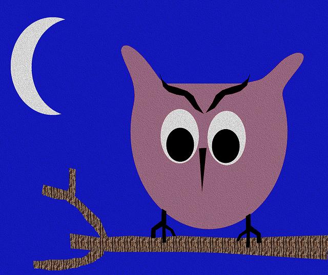 Owl, Night, Bird, Nature, Blue Night
