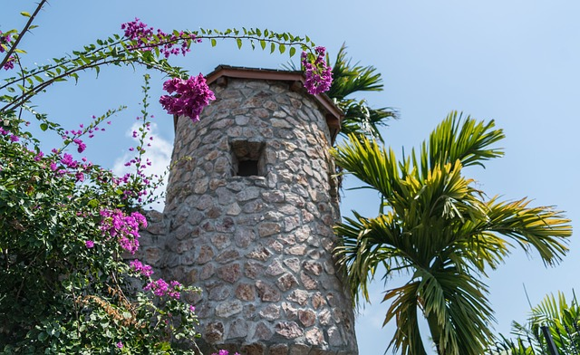 Stone Tower, Palm Trees, Tropical, Summer, Nature, Sky