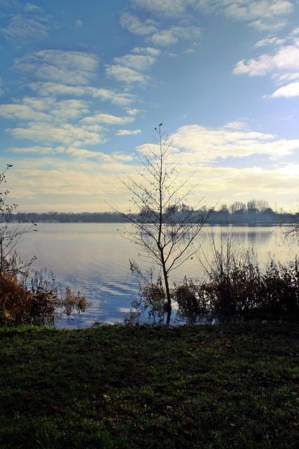 Landscape, Nature, Waters, Panorama, Tree