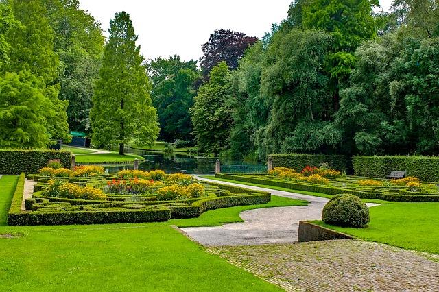 Park, Parkland, Garden, Plant, Flower, Grass, Nature