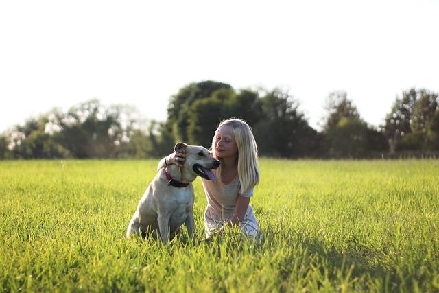 Child, Dog, Nature, Children, Pet, Cute, Girl