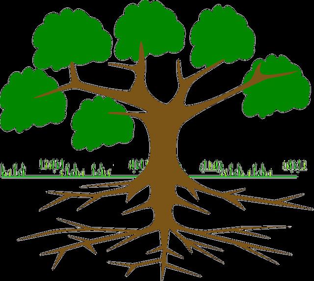 Free Photo Tribe Log Thorns Kapok Tree Green Ceiba Tree Max Pixel