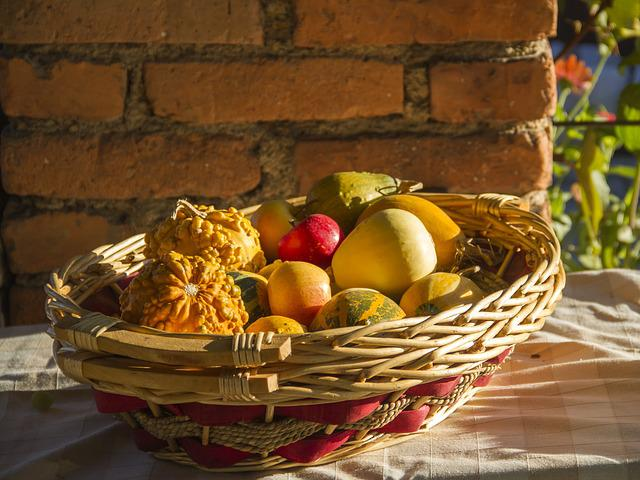 Fall, Autumn, Sunny, Pumpkins, Nature, Harvest