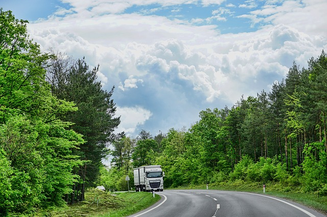 Nature, Road, Tree, Wood, Landscape, Sky, Truck