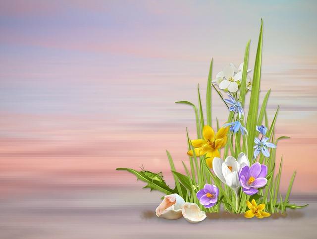 Spring, Spring Flowers, Nature, Flower, Plant, Season