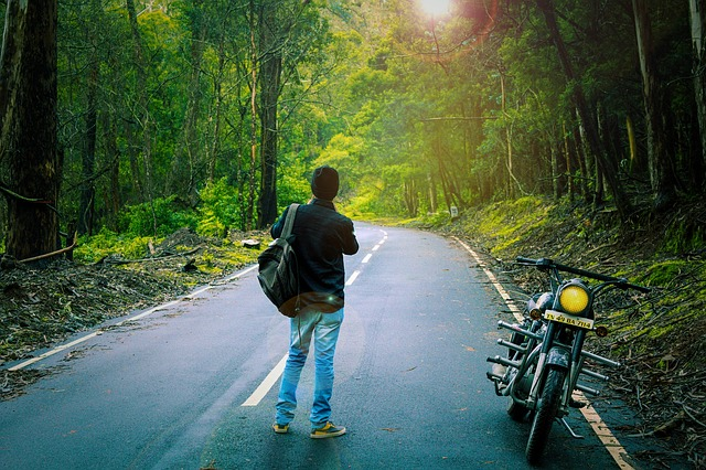 Nature, Royal Enfield, Man, Season, Natural, Male, Wild