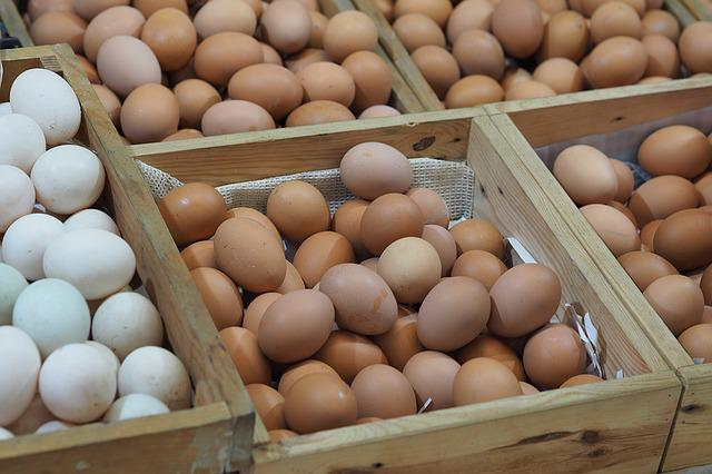 Egg, Panel, Sell, Food, Raw Materials, Nature