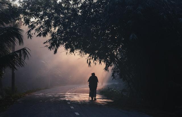 Walking, Morning, Rural, Nature, Shadow, Landscape
