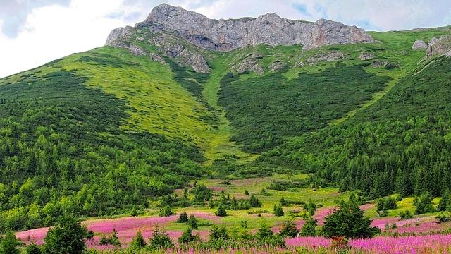 Tatry, The Slovak Tatras, Slovakia, Nature, Mountains