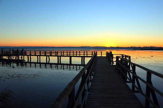 Sunrise, Spring Lake, Web, Nature, Nature Conservation