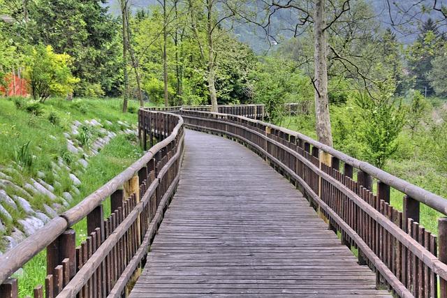 Wood, Nature, Tree, Summer, Park, Landscape, Grass