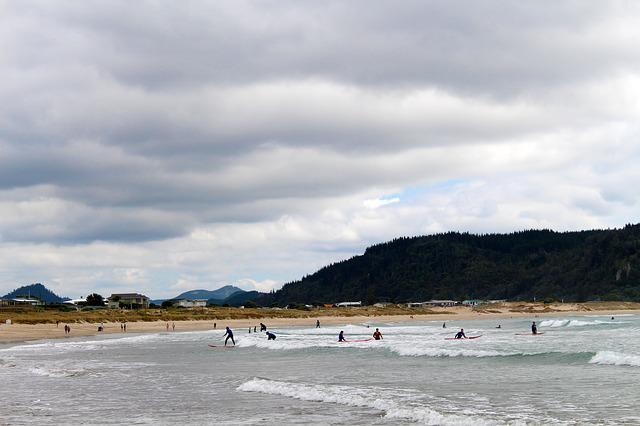 Surf, Learn, New Zealand, Children, Forest, Nature