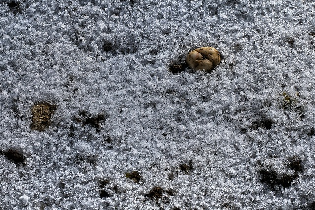 Pebble, Snow, Thaw, Frost, Nature, Pattern, Background