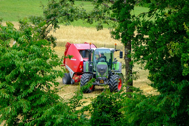 Tractor, Baler, Red, Trees, Branch, Nature, Field