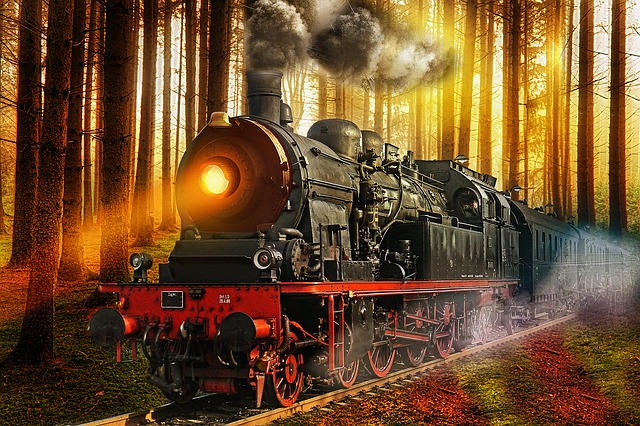Train, Forest, Nature, Travel, Transport, Wood