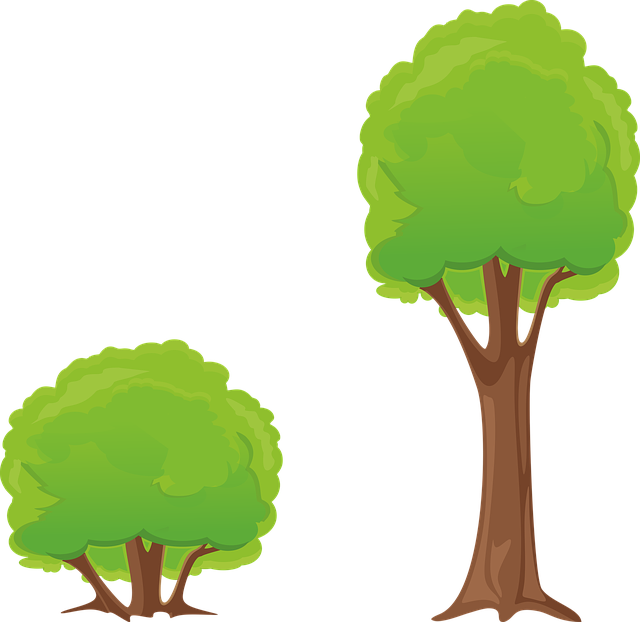 Tree, Bush, Clipart, Nature, Forest