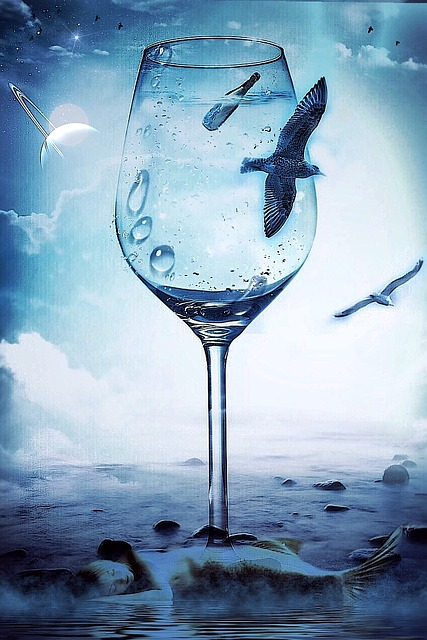 Seagull, Sea, Mermaid, Mystical, Underwater, Nature