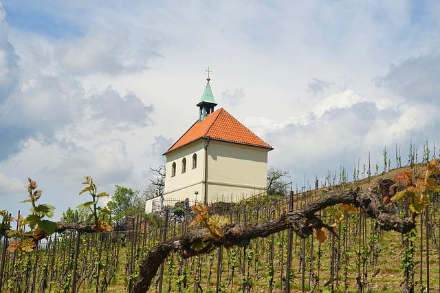 Vineyard, Prague, Czechia, Chapel, Sky, Nature