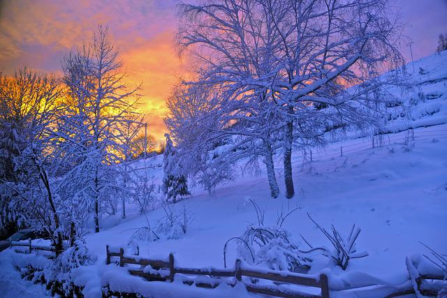 Sunrise, Snow, Mountain, Nature, Winter, Vosges
