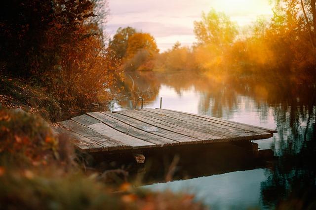 Lake, Web, Autumn, Boardwalk, Water, Nature, Atmosphere