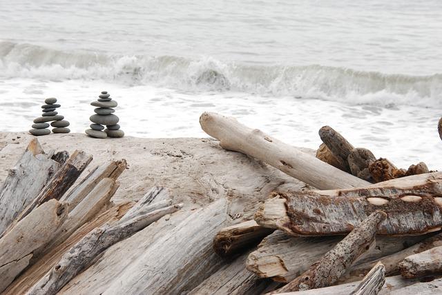 Nature, Landscape, Sea, Water, Wood, Rock, Pebble, Golf
