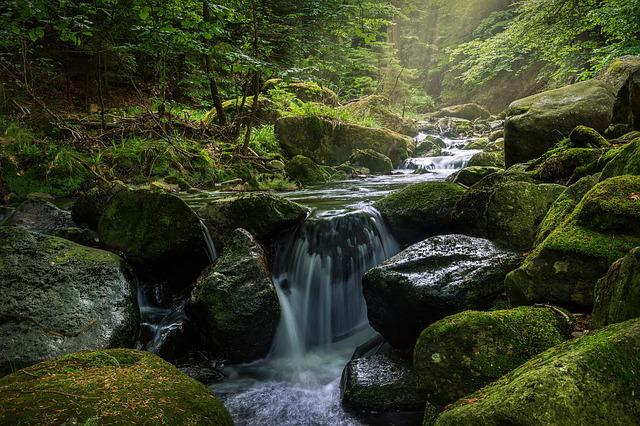 Waters, Waterfall, River, Moss, Nature