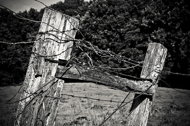 Wood, Fence Post, Pile, Fence, Weathered, Nature