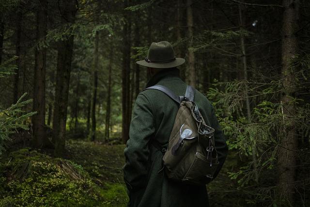 Forest, Nature, Hunter, Wilderness, Wildlife, Wild