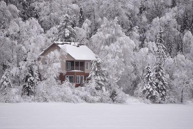Winter Landscape, Snow, Frozen Lake, Nature, Snowy