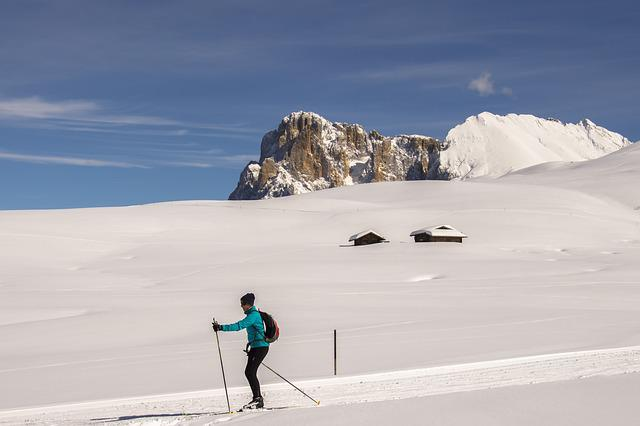 Cross Country Skiing, Seiser Alm, Snow, Winter, Nature